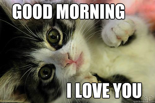 Funny I Love You Good Morning Quotes : Cute Love Memes For Him And For Her - Love Is Not Abuse