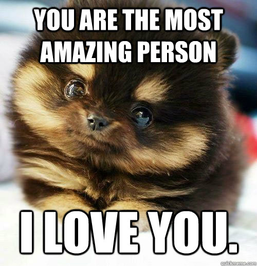 Cute Love Memes For Him And For Her Love Dignity