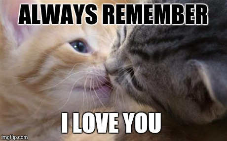lbpbl cute love memes for him and for her love dignity,I Love Her Meme