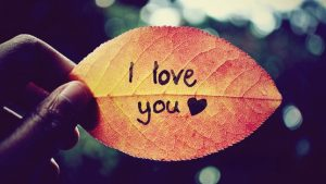 I Love You Pictures and Images