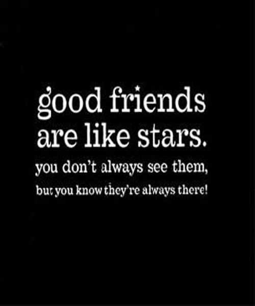 Cute Funny Friendship Quotes For Best Friend Love Dignity