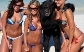 The Most Epic Hot Girl Fails Ever!