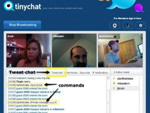 TinyChat review